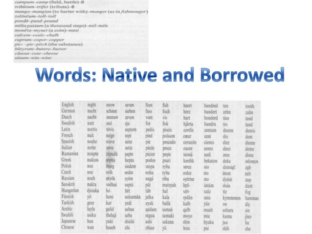 borrowings english language and word Greek and latin loan words in english language (tendencies of evolution) 257 sixth century ad (597 ad) was very significant because of the christianization.