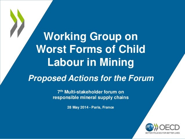 Working Group on Worst Forms of Child Labour in Mining Proposed Actions for the Forum 7th Multi-stakeholder forum on respo...