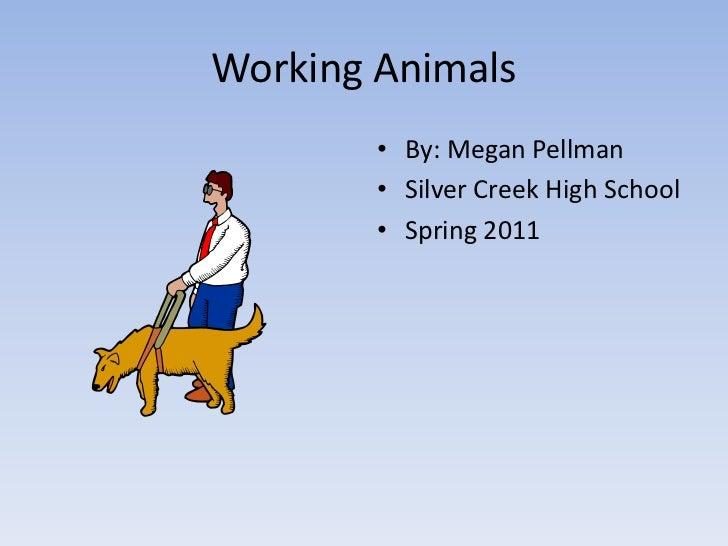 Working animals