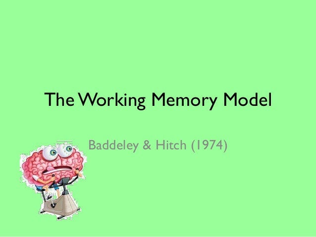 The Working Memory Model    Baddeley & Hitch (1974)