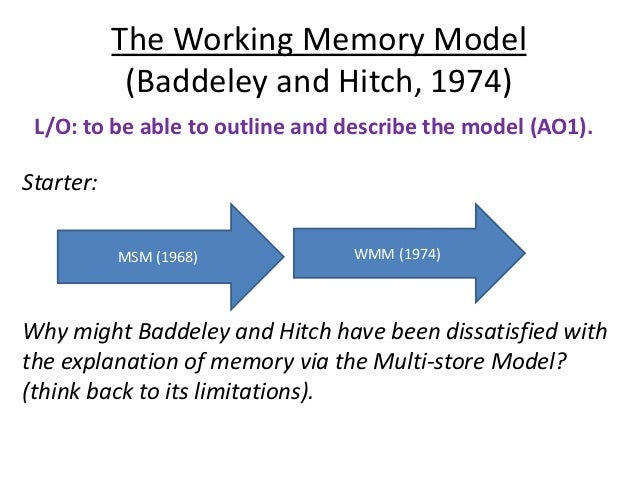 Working memory model, case study cw & evaluate msm