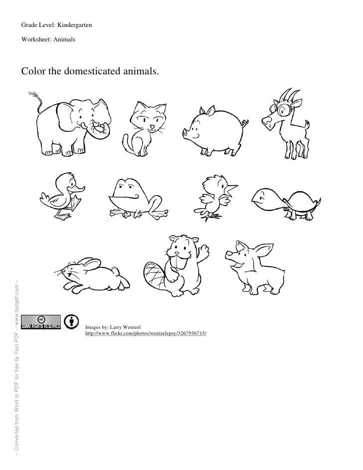 Worksheets For Grade 1 Animals: Farm animals worksheet.