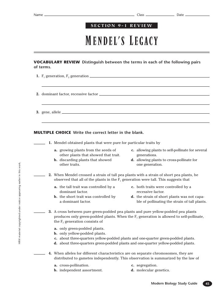 Printables Dna And Genes Worksheet chapter 11 dna and genes worksheet answers plustheapp answers