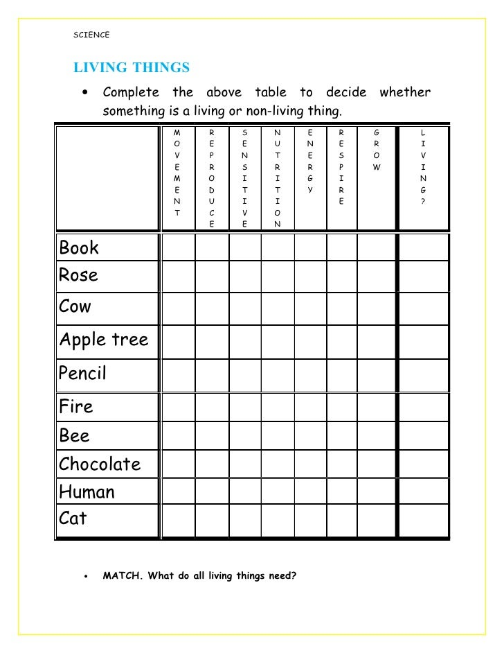 Worksheet Living Things1 on Needs And Characteristics Of Living Things 1