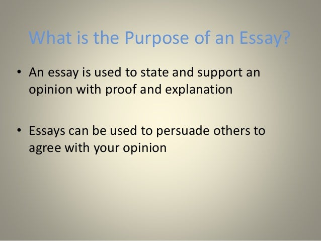 What is the point of Essays?