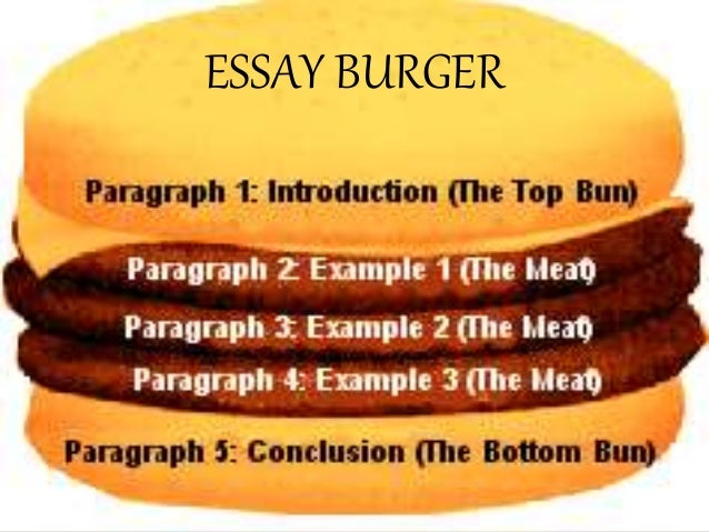 Essay Like Hamburger