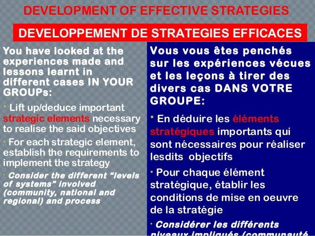 DEVELOPMENT OF EFFECTIVE STRATEGIES You have looked at the experiences made and lessons learnt in different cases IN YOUR ...