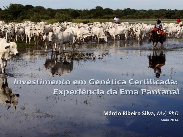 Márcio  Ribeiro  Silva,  MV,  PhD   Maio  2014