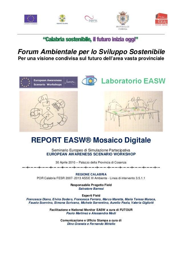Workshop easw mody   provincia di cosenza 2010  forum ambientale per lo sviluppo sostenibile