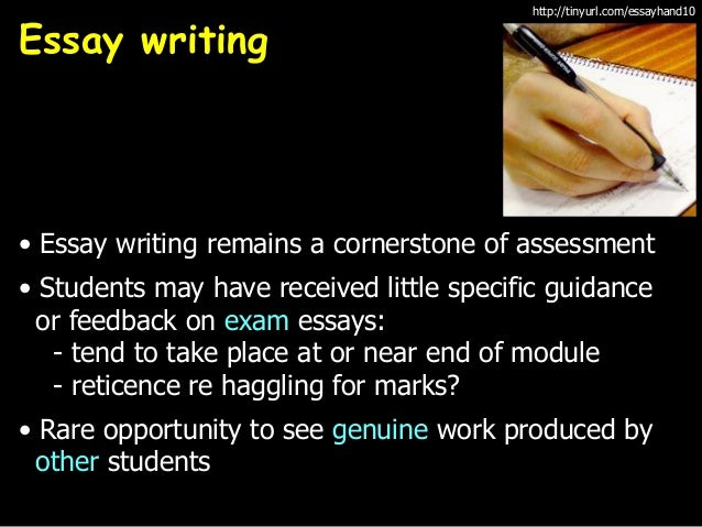 career writing essays