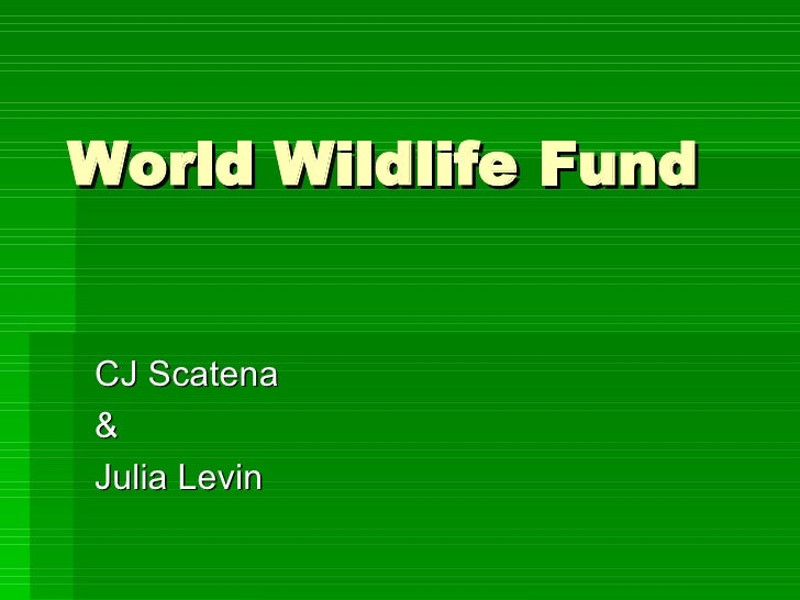 World Wildlife Fund CJ Scatena & Julia Levin