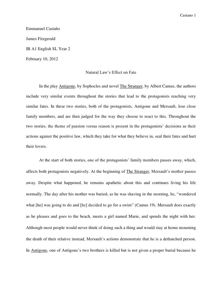 Genial Sample English Essay English Sl World Literature Essay Castano Emmanuel  Castañojames Fitzgeraldib A English