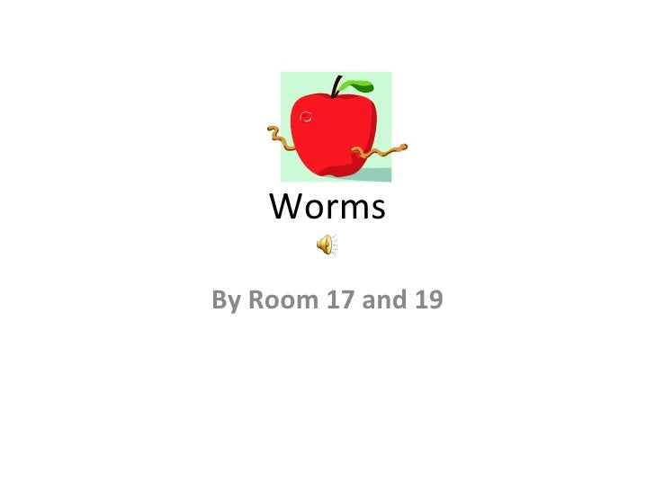 Worms  By Room 17 and 19