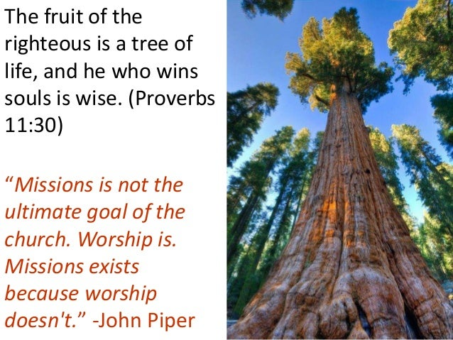 """The fruit of the righteous is a tree of life, and he who wins souls is wise. (Proverbs 11:30) """"Missions is not the ultimat..."""