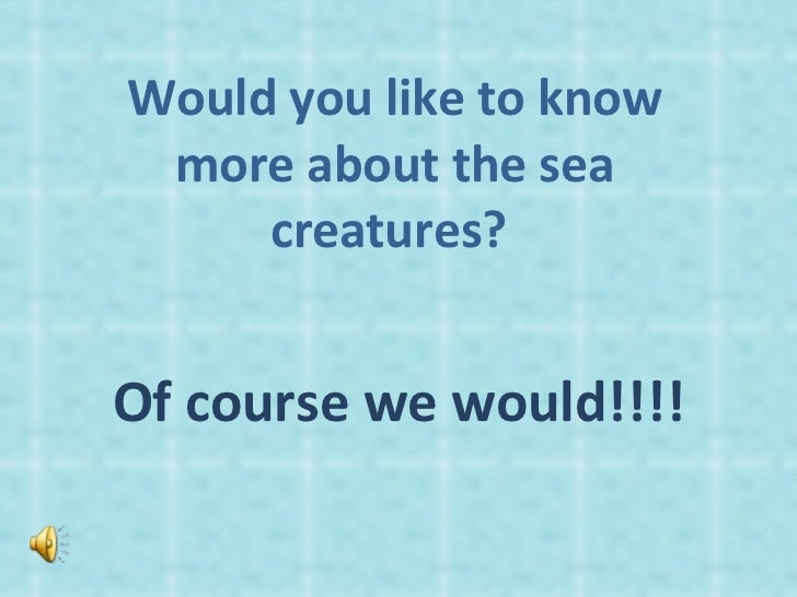 Would you like to know more about the sea creatures?  Of course we would!!!!