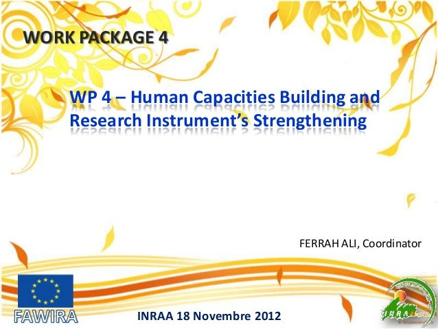 WORK PACKAGE 4 INRAA 18 Novembre 2012 FERRAH ALI, Coordinator WP 4 – Human Capacities Building and Research Instrument's S...