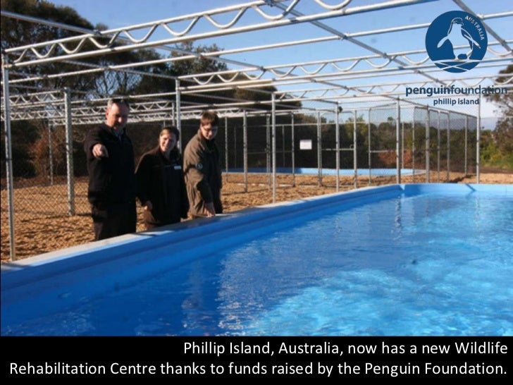 Phillip Island, Australia, now has a new WildlifeRehabilitation Centre thanks to funds raised by the Penguin Foundation.