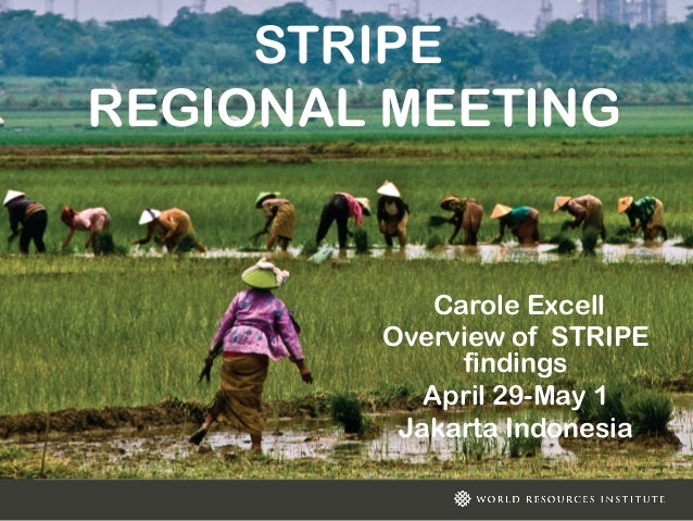 Wri stripe regional meeting: Overview of STRIPE Findings