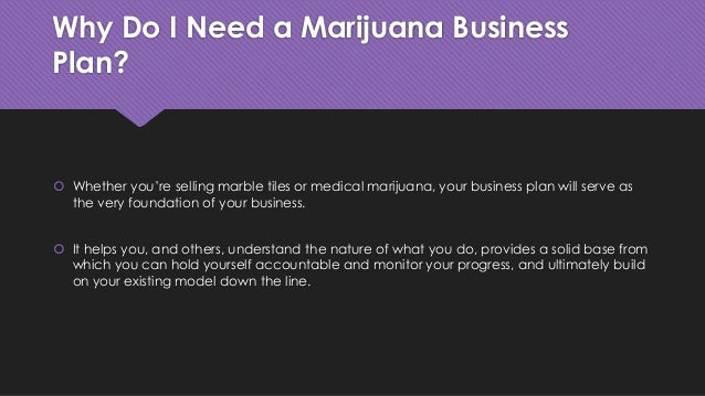 What you need in a business plan
