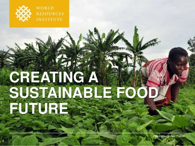 Photo Source: Neil Palmer CREATING A SUSTAINABLE FOOD FUTURE