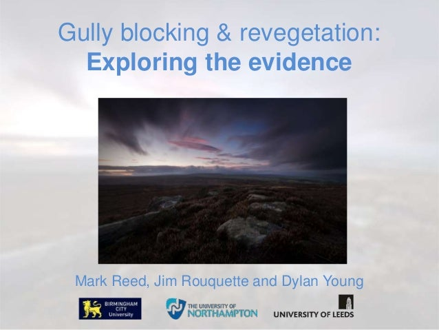 Gully blocking & revegetation: Exploring the evidence Mark Reed, Jim Rouquette and Dylan Young