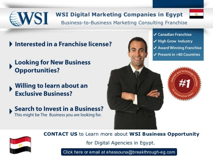 WSI  Digital Marketing Companies in Egypt Click here  or email at  [email_address] Business-to-Business Marketing Consulti...