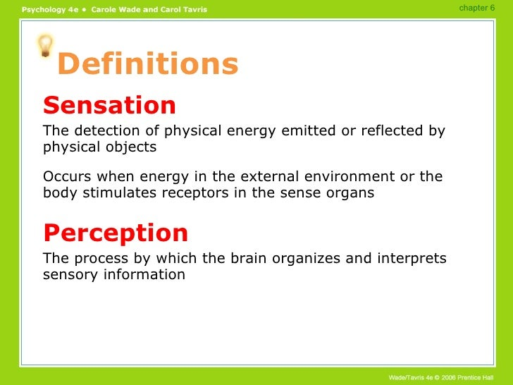 Perception Essay Examples