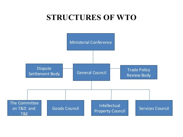 an analysis of the dispute settlement mechanism of the world trade organisation Wto's dispute settlement mechanism: the constitutional  'marrakesh agreement establishing world trade organisation  dispute settlement mechanism is.