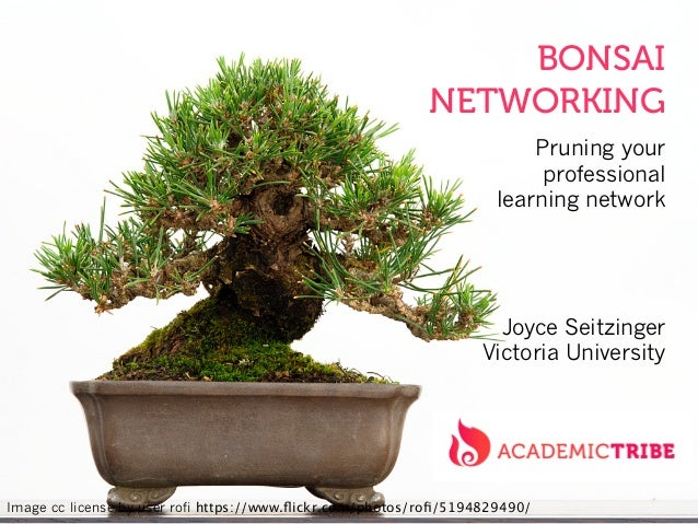 BONSAI NETWORKING Pruning your professional learning network Joyce Seitzinger Victoria University Image cc license by user...