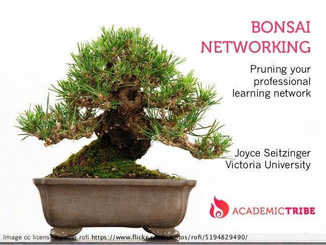 Bonsai Networking: pruning your professional learning network (VU Seminar)
