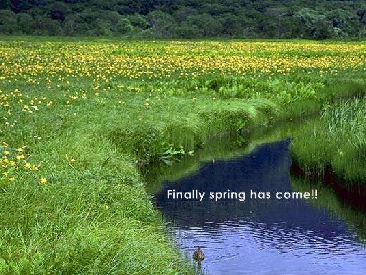 Finally spring has come!!<br />
