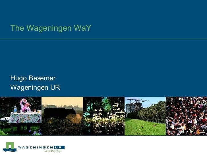 The Wageningen WaY Hugo Besemer Wageningen UR