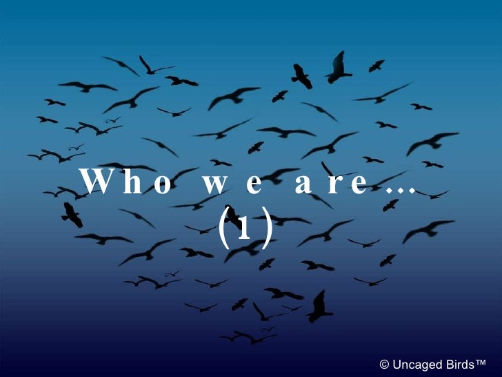 Sister in Europe: Who we are…(1) Noah Sow (Germany) © Uncaged Birds™