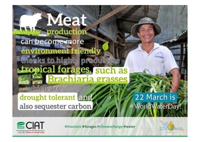 World Water Day 2014 - Drough tolerant tropical forages for greener meat production