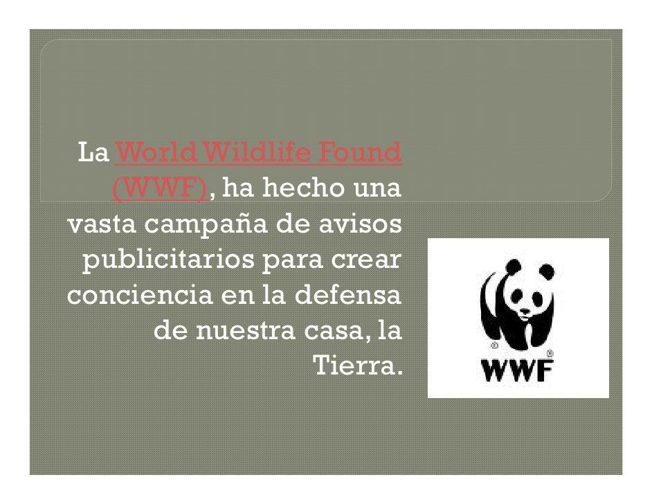 La World Wildlife Found    (WWF), ha hecho una vasta campaña de avisos  publicitarios para crear conciencia en la defensa ...