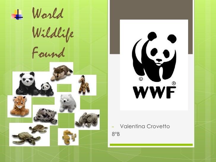 WorldWildlifeFound<br /><ul><li>Valentina Crovetto </li></ul>8ºB<br />