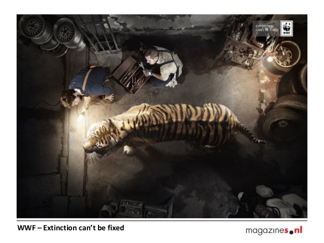 WWF – Extinction can't be fixed