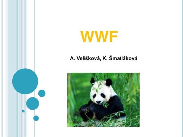 WWF A. Velíšková, K. Šmatláková