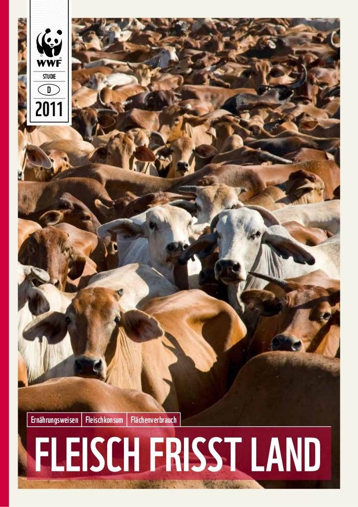 STUDIE 2011Ernährungsweisen Fleischkonsum Flächenverbrauch