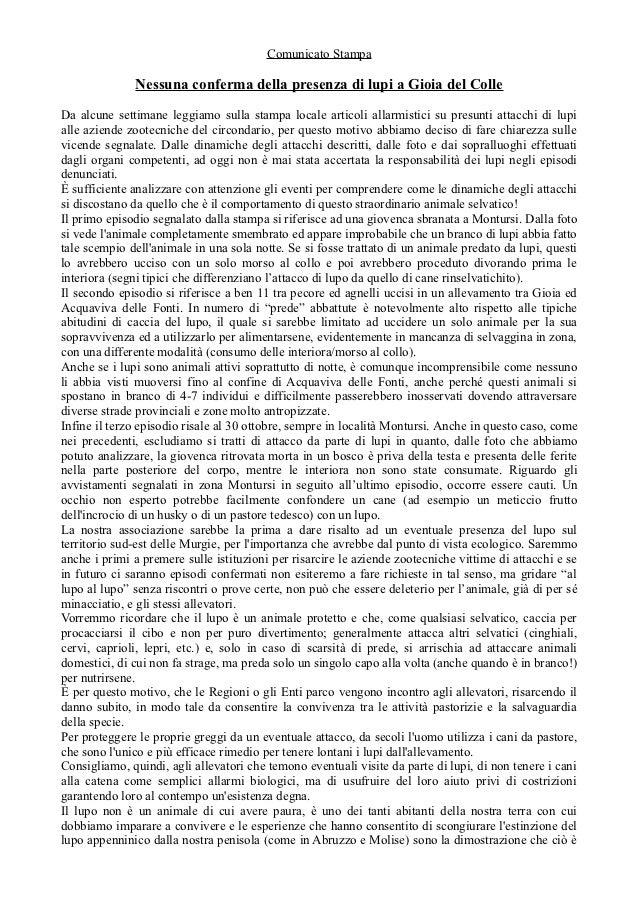 Comunicato Stampa              Nessuna conferma della presenza di lupi a Gioia del ColleDa alcune settimane leggiamo sulla...