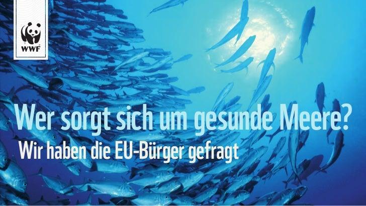 EU-Bürger sorgen sich um gesunde Meere.