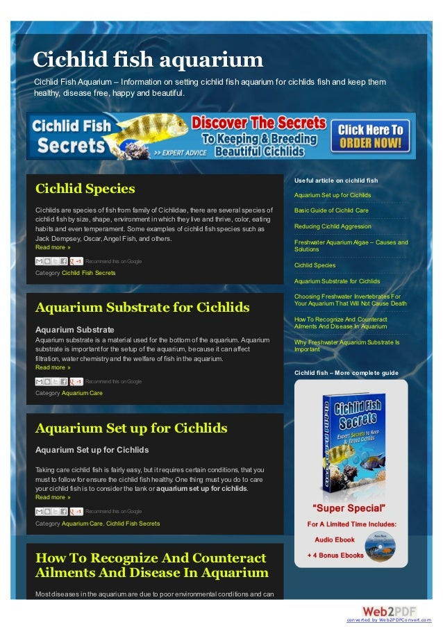 Cichlid fish aquariumCichlid Fish Aquarium – Information on setting cichlid fish aquarium for cichlids fish and keep themh...