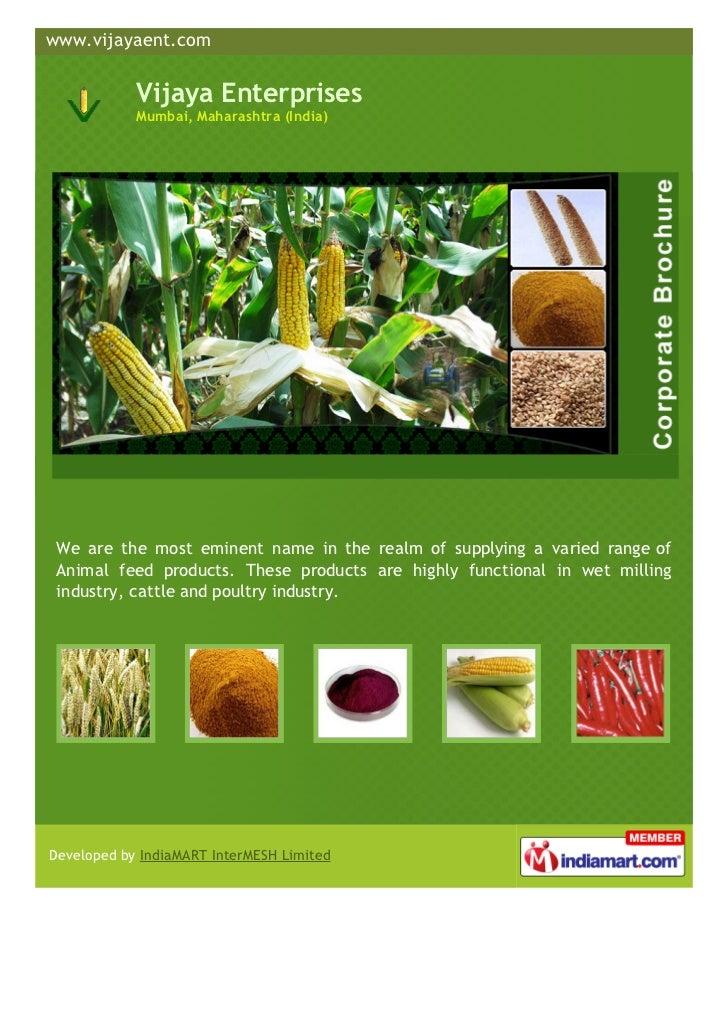 www.vijayaent.com            Vijaya Enterprises            Mumbai, Maharashtra (India) We are the most eminent name in the...