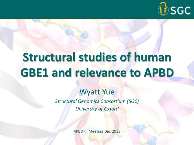 Structural Studies of Human GBE1 and Relevance to APBD