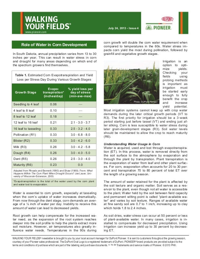 In South Dakota, annual precipitation varies from 13 to 30 inches per year. This can result in water stress in corn and dr...