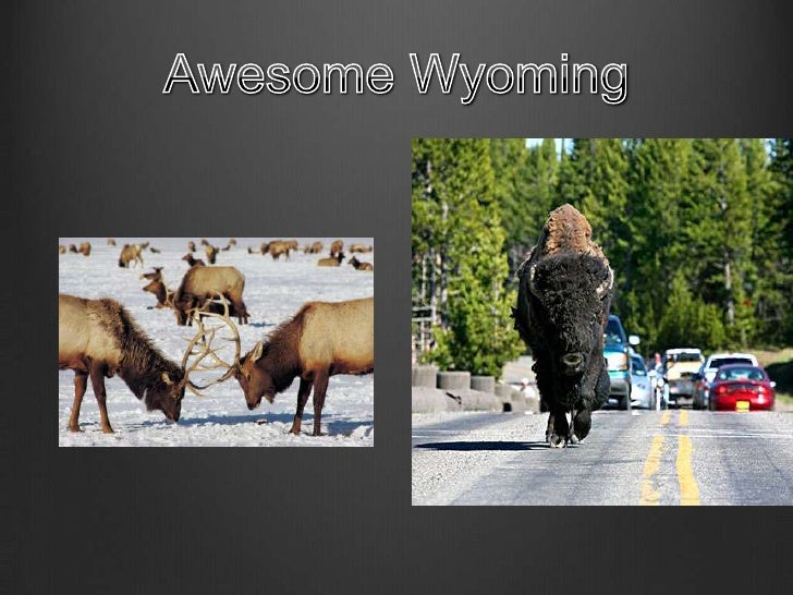 Awesome Wyoming<br />