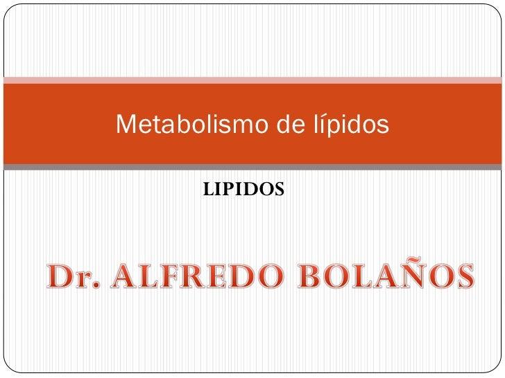Metabolismo de lípidos      LIPIDOS