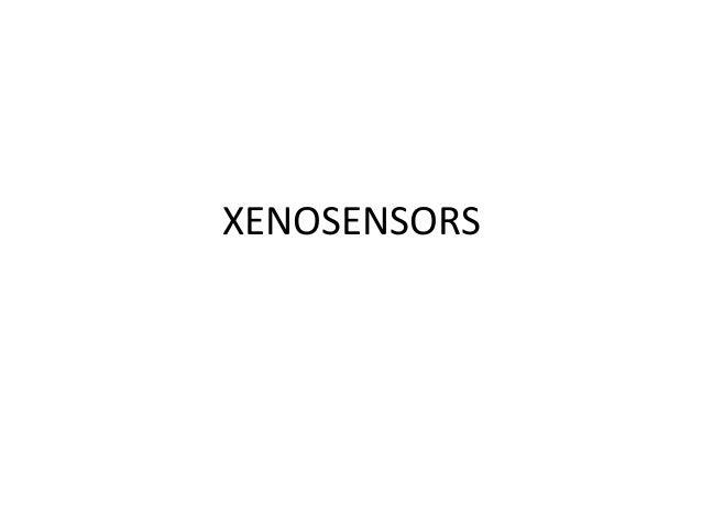 Xenosensors