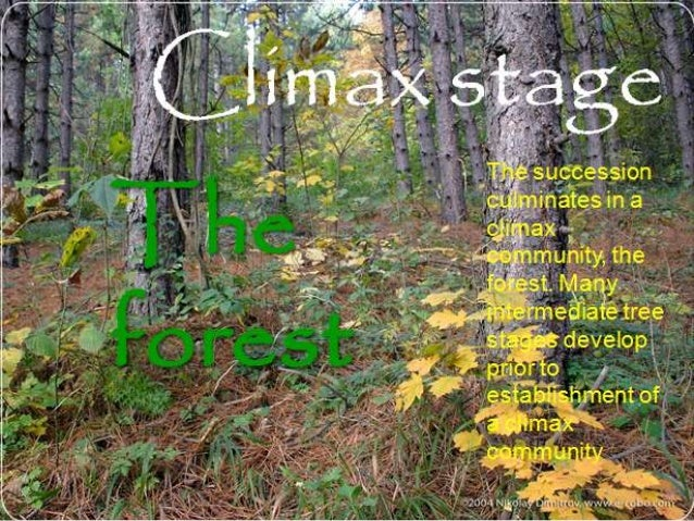 climax community Characteristics of climax community community definition, a social group of any size whose members reside in a specific locality, share government, and often have.
