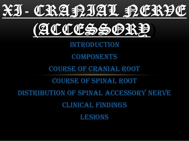 INTRODUCTION COMPONENTS COURSE OF CRANIAL ROOT COURSE OF SPINAL ROOT DISTRIBUTION OF SPINAL ACCESSORY NERVE CLINICAL FINDI...
